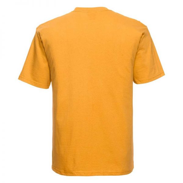 180gsm 100% Ringspun Cotton Classic T-Shirt Short Sleeve - JTA180-gold-back