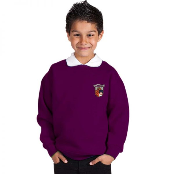 300g 70/30 CP Kids Premium Hi-Spec Set-In Bell Baxter Crew Sweatshirt - TSK01-sweat-purple